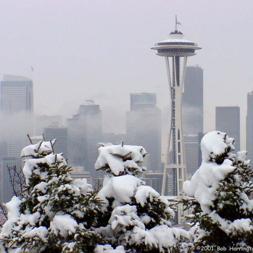 seattle-snow1