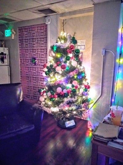Jackson Street tree