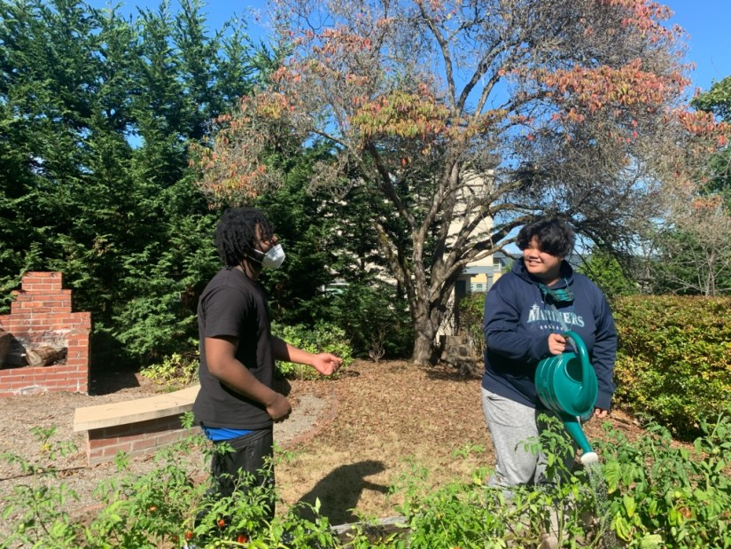 Youth gardening at YouthCare's Passages Housing Program