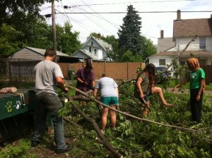 Youth Farm Project LEAD worked together to chop and haul the tree.