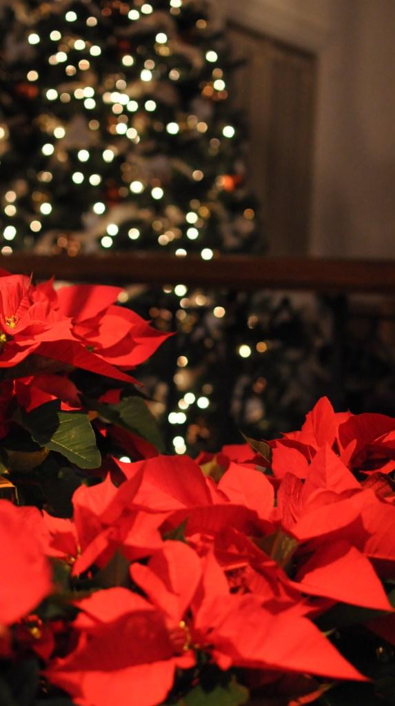 Saint Matthew UMC Christmas Eve Candlelight Service