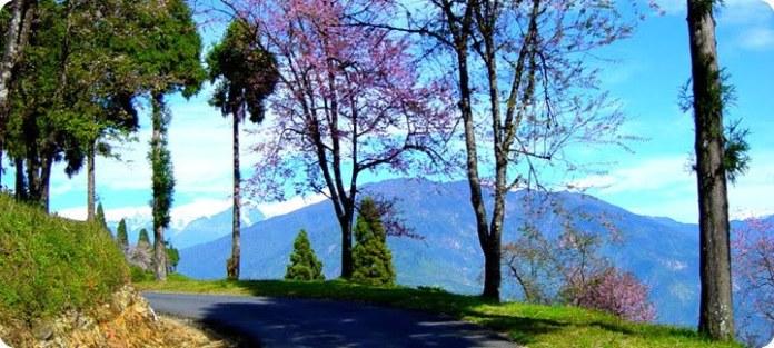 Kaluk Sikkim