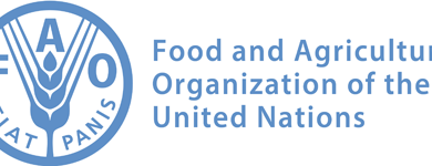 Photo of THE UNITED NATIONS' FOOD AND AGRICULTURE ORGANIZATION (FAO) FELLOWSHIP PROGRAMME 2021