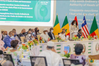 ECOWAS To Set Up A Monitoring Committee On Transition Process In Mali