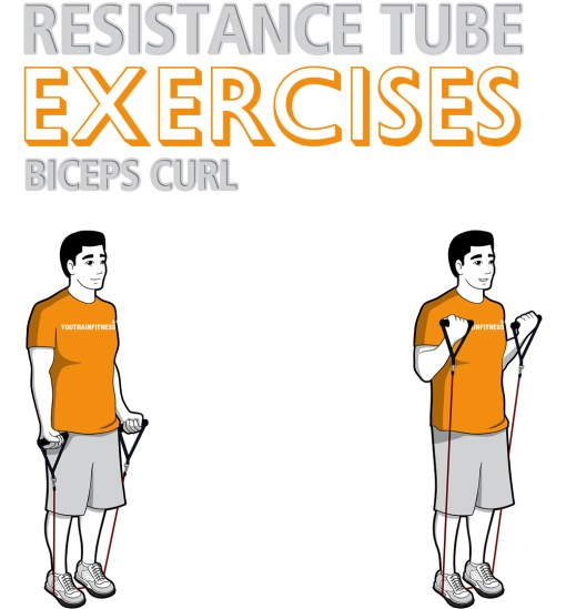 resistance-tube-standing-biceps-curl