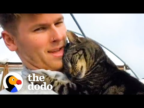 Cat Gives Her Dad Hugs All Day, Every Day   The Dodo Cat Crazy