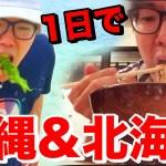 [ヒカキン]1日で沖縄の海入って北海道のみそラーメン食べて帰ってこれるのか旅行