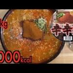 [木下ゆうか]【MUKBANG】 Spicy!!! 8 OF The 10th Anniversary Fire Fish Cup Noodles!! [About 5Kg] 4000kcal [Use CC]