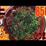 [木下ゆうか]【MUKBANG】 Eel?? Grilled Beef Hitsumabushi Rice Bowl [& Japanese Broth Rice] 5.5Kg 8500kcal[Use CC]