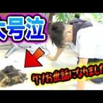 [STスタジオ【感動】ノリ、1年越しの散髪で涙の大号泣…切った毛量がエグい!!!!!