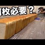 [はじめしゃちょー]【実験】食パン何枚あれば最強のエアガンを止めれるの?