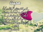 Arshad Chinioti 03023743624 (314)