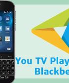 descargar you tv player blackberry apk