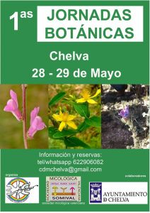 Botánica Chelva 001