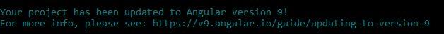 Angular9 update