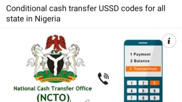 Conditional Cash Transfer USSD Codes For All State In Nigeria