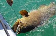Dünyanın En Şanslı Balıkçısı!