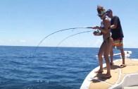 Florida Açıklarında Mercan Avı!