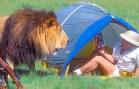 Çekimlerde Belgeselcilere Sürpriz Yapan Çılgın Hayvanlar