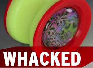 Techcrunch YoYo Whacked