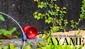 Saitou Ryunosuke x Yamamura Hoshou – AYAME