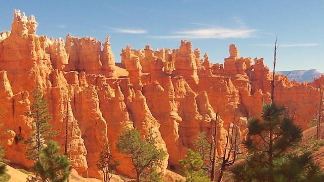 Superbe nature que vous allez voir dans le parc de Bryce Canyon aux Etats-Unis photo blog voyage tour du monde https://yoytourdumonde.fr