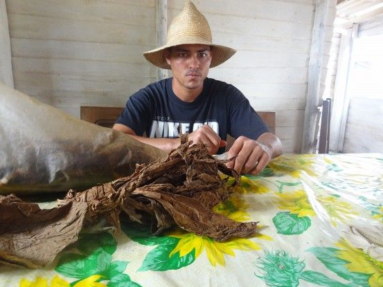 Mon beau guide du coté de Vinales photo blog voyage tour du monde cuba https://yoytourdumonde.fr