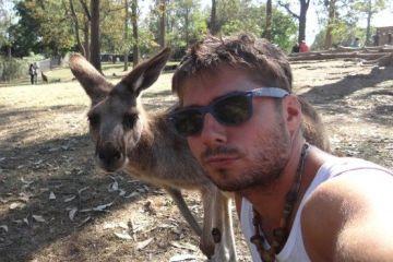australie-brisbane-sanctuaire-koala-kangouroux-voyage-travel