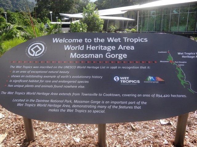 Australie- Queensland: Cette partie de la foret humide est aussi inscrite au Patrimoine Mondiale de l'Unesco.