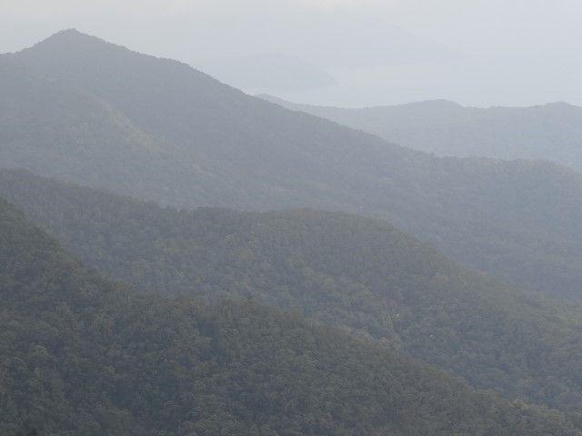 Australie- Queensland: Cap Tribulation