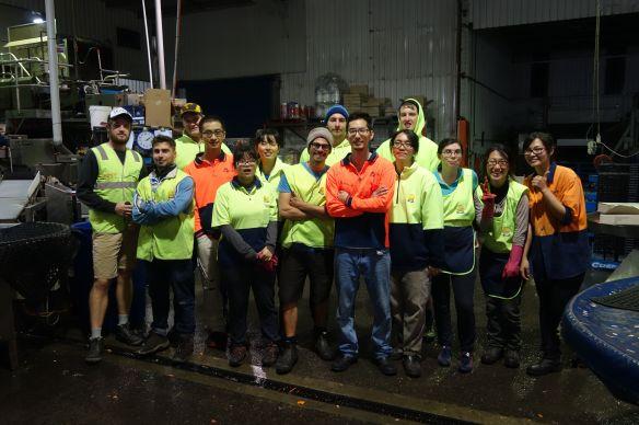 Australie- Tasmanie: Les différentes photos de groupes...