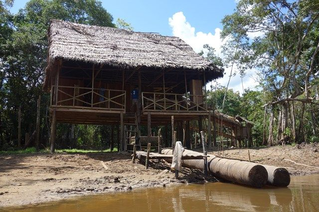 Pérou-Réserve Pacaya Samiria: Ici le premier campement.