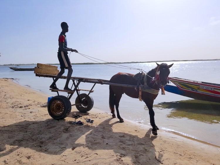 A Mar Lodj les voitures sont inexistantes places aux formules 1 c'est à dire à la caleche. Photo blog voyage tour du monde http://yoytourdumonde.fr