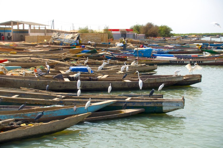 Le port de Ziguinchor photo blog voyage tour du monde https://yoytourdumonde.fr