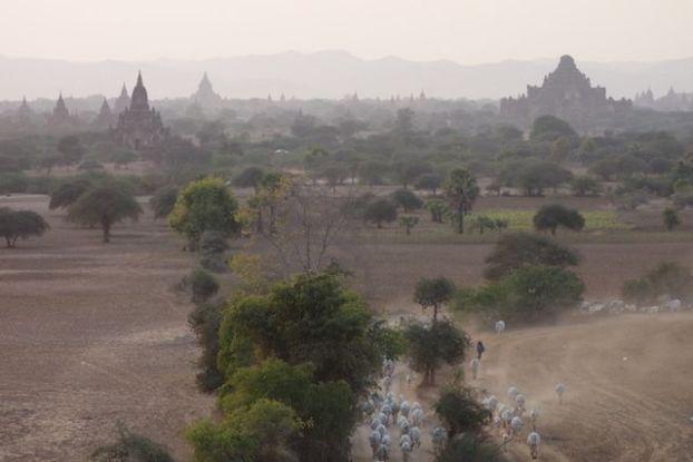 birmanie photo prise lorque le soleil se couhchait du coté de la Pagode Shwesandaw au myanmar sur le site archeologique de de Bagan photo blog voyage tour du monde https://yoytourdumonde.fr