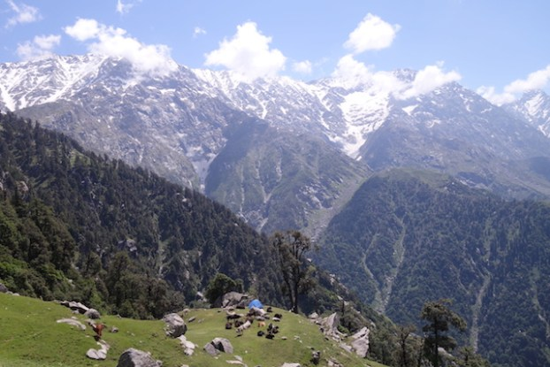 Trek du Triund Hill à Dharamsala photo blog voyage tour du monde inde himalaya https://yoytourdumonde.fr