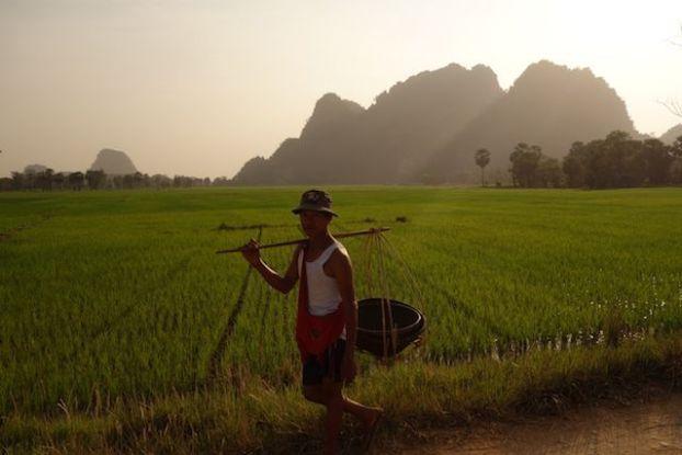 les paysans rentrent à la maison apres avoir travailler à hpa-an photo blog tour du monde https://yoytourdumonde.fr