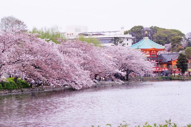La ville de Tokyo est traversé par le fleuve Sumida. Photo blog voyage tour du monde https://yoytourdumonde.fr