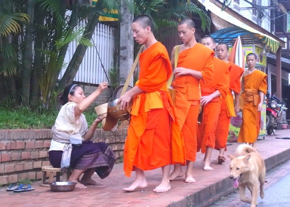 Cérémonie aumone luang prabang laos photo blog voyage tour du monde https://yoytourdumonde.fr