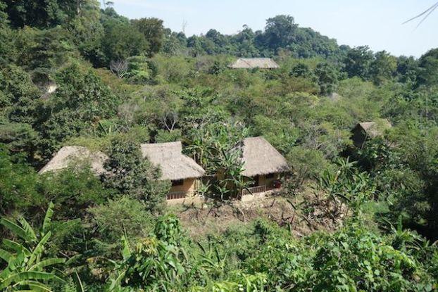 A kep au Cambodge une randonnée pedestre vous y attend avec meme un hotel dans la jungle à l'abandon! Article commplet sur mon blog: https://yoytourdumonde.fr