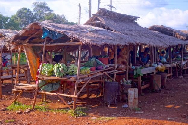 Des fruits se vendent sur le bas coté des rues sur le plateau des bolovens au Laos photo blog voyage tour du monde https://yoytourdumonde.fr