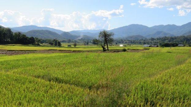 voyage-travel-thailde-paysage