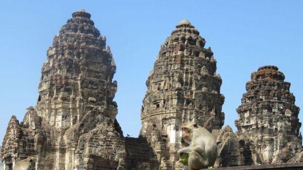 temple-lopburi-singe-travelling-voyage