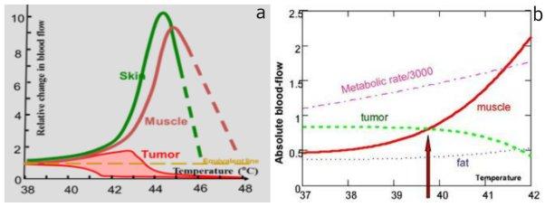 Υπερθερμία και θερμοκρασιακή αντιστροφή άρδευσης: Θερμοκρασιακός ουδός αναστροφής συναρτήσει της θερμοκρασίας