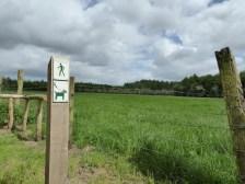 Verken de Ieperboog te voet! - Discover the Ypres Salient by foot! - Découvrez le Salient d'Ypres à pied! ©YRH2016