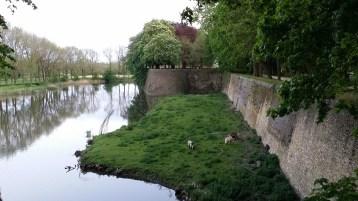 vestingen - ramparts - remparts ©YRH2016