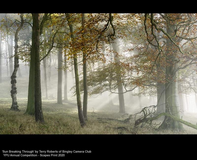 Bingley Camera Club_Terry Roberts_Sun Breaking Through