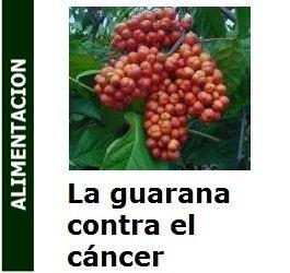 La_-guarana_contra_el_cancer_portada