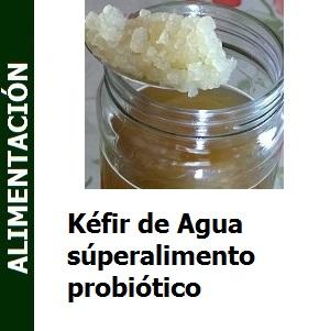 Kefir_de_Agua_superalimento_probiótico_Portada