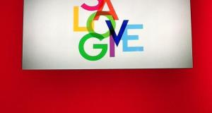slg - Event Recap: Launch of VERA and the @SaveLoveGive campaign #savelovegive
